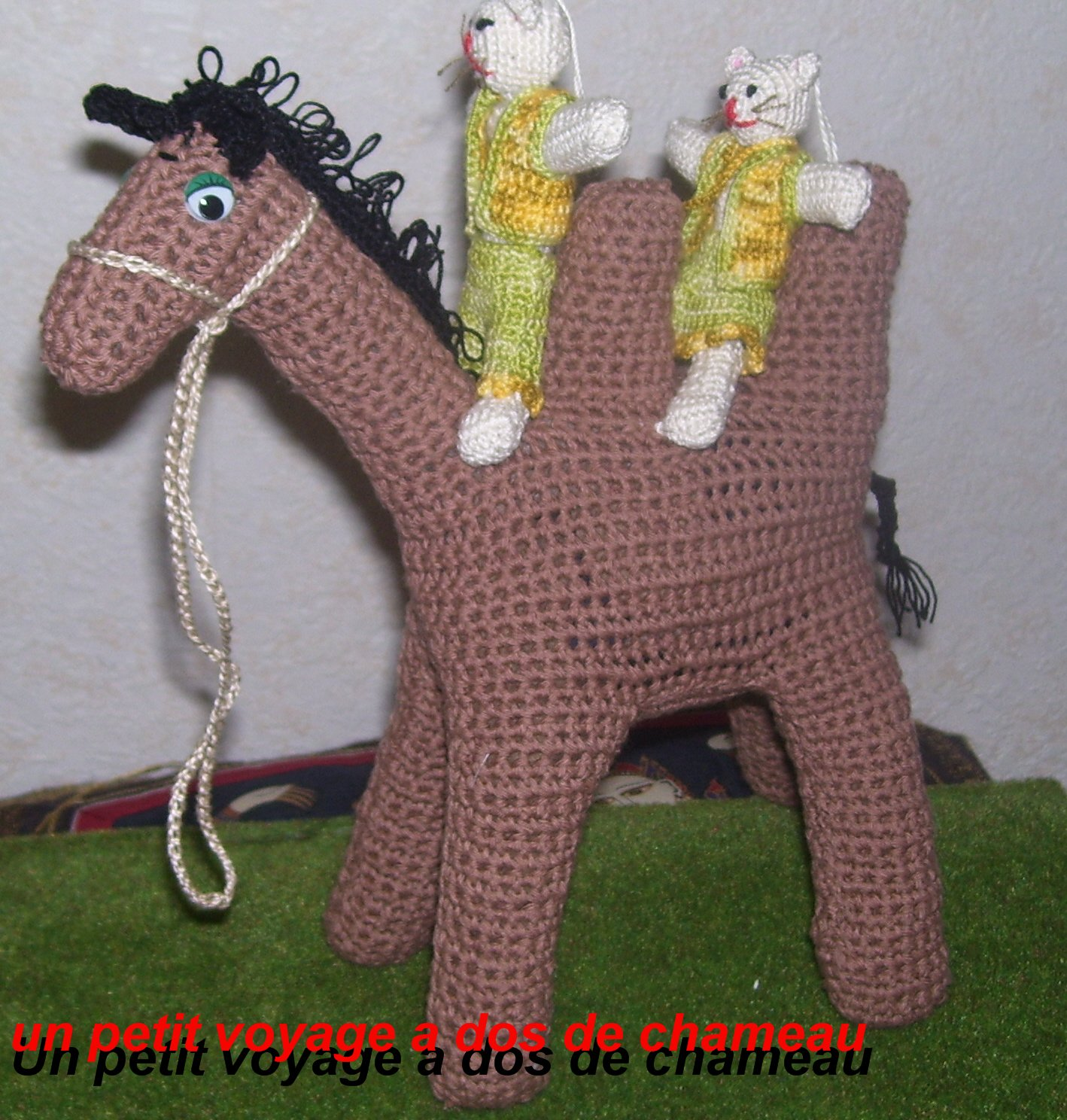 ma passion le crochet un petit voyage a dos de chameau. Black Bedroom Furniture Sets. Home Design Ideas